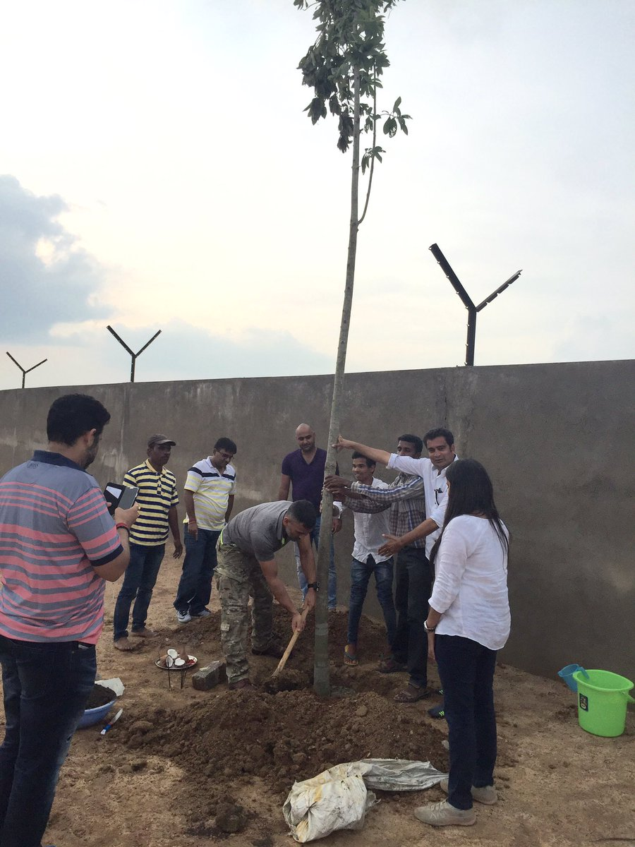 What could be the best way to celebrate my birthday,planted the 1st and very spl tree at the farm house KAILASHPATI https://t.co/QQ3DpDCCk1